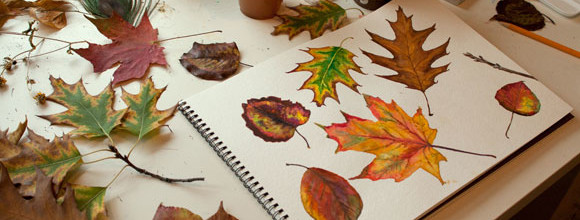 Work in Progress: Leaves Study