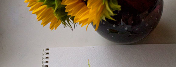 In the Studio: Sunflowers